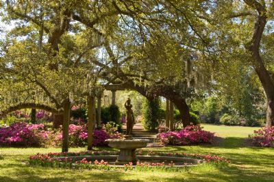 While In Wilmington Nc Take A Day Trip To Airlie Gardens