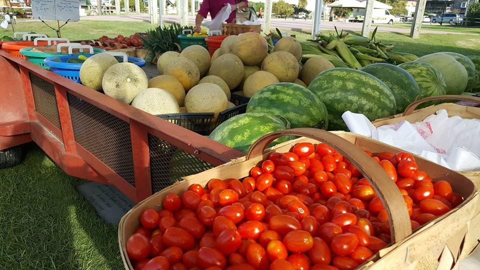 Farmers Market Myrtle Beach Sc