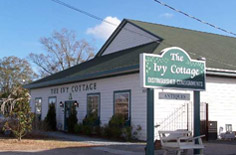 the-ivy-cottage-wilmington-nc